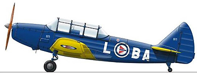 Profil couleur du Fairchild PT-19/23/26 Cornell