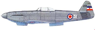 Profil couleur du Ikarus S-49