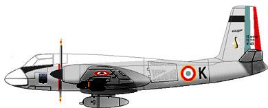 Profil couleur du SNCASE  SE.116/SE.117 Voltigeur