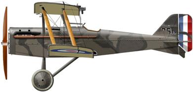 Profil couleur du R.A.F. SE.5
