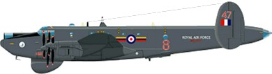 Profil couleur du Avro  Shackleton