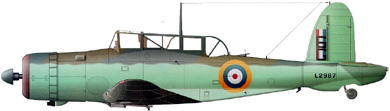Profil couleur du Blackburn B-24 Skua