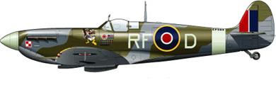 Profil couleur du Supermarine Spitfire