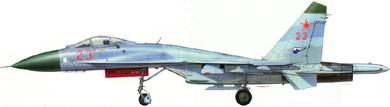 Profil couleur du Sukhoï Su-27  'Flanker'