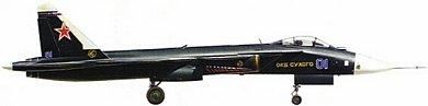 Profil couleur du Sukhoï Su-47 Berkut