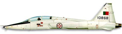 Profil couleur du Northrop T-38 Talon