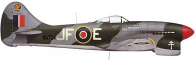 Profil couleur du Hawker  Tempest