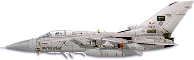 Profil couleur du Panavia  Tornado ADV