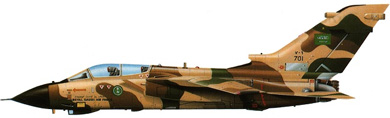 Profil couleur du Panavia  Tornado IDS