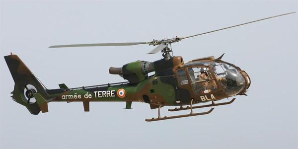 القوات البرية الفرنسية من الالف الى الياء - صفحة 3 Ggazelle