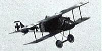 Miniature du LFG Roland D.I / D.II