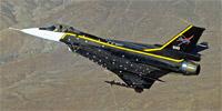 Miniature du General Dynamics F-16XL
