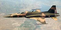 Miniature du Northrop F-5 Tiger II