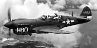 Miniature du Curtiss P-40 Warhawk