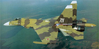 Miniature du Sukhoï Su-37 Terminator 'Super Flanker'