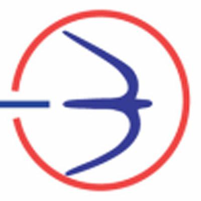 Logo de Basler