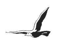 Logo de Percival