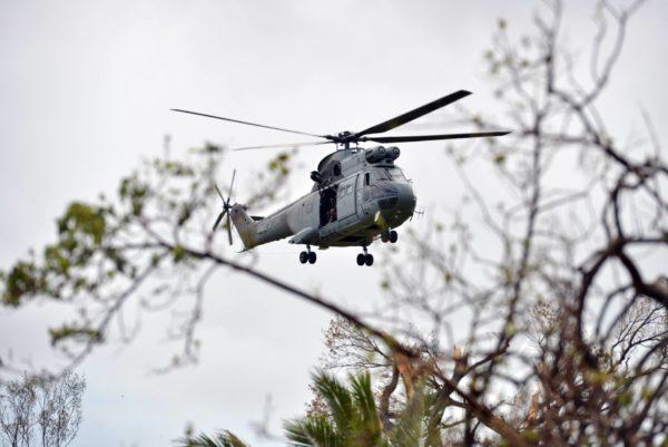 Le Puma néo-calédonien en action aux Vanuatu.