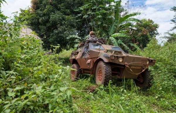 Dans la forêt centrafricaine ce Véhicule Blindé Léger  de l'Armée de Terre semble dans son élément.