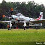 A-1 Skyraider - Ferté-Alais 2008