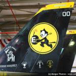 Grumman F-14D Tomcat 164342 US Navy